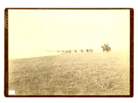 "Company K of the 5th Infantry Firing in a Skirmish Line. LIBI_00030_05113; A sepia-toned photograph, mounted on card, of skirmish line on the Custer battlefield on June 25, 1886. This shows Company K, of the 5th U. S. Infantry. They are lined up along a battle ridge firing northeast. There are two mounted officers on the right side of the photo. It was produced by D. F. Barry in Bismarck, Dakota Territory. ; print, photographic [mounted on card];  Courtesy of the National Park Service, Little Bighorn Battlefield National Monument, LIBI_00030_05113, D. F. Barry, ""Company K of the 5th Infantry Firing in a Skirmish Line,"" June 25, 1886."