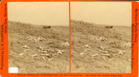 "Horse Bones, Wooden Stakes, and ""Unknown"" sign.. LIBI_00030_00673; A stereoscope (stereoscopic card photograph) depicting collection of horse bones, boot, wooden marker (presumably to mark locations of bodies from Custer Battle) somewhere on the Custer Battlefield, near Custer markers; published by L. A. Huffman, circa 1879.  From series ""Northern Pacific Views, Badland and Big Horn Scenery.""  note in ink: picture file & negative.; STEREOGRAPH [Stereoscopic card photograph];  Courtesy of the National Park Service, Little Bighorn Battlefield National Monument, LIBI_00030_00673, L. A. Huffman, ""Horse Bones, Wooden Stakes, and an 'Unknown' Sign,"" circa 1879"