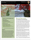 RTCA 2012 New Hampshire News. This brochure provides information about the current projects and recent successes.