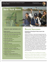 RTCA 2013 New York News. This brochure provides information about the current projects and recent successes.