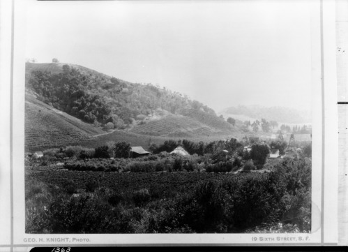 Old Muir homestead near Martinez [Alhambra Valley].