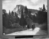 President Theodore Roosevelt and John Muir riding down Yosemite Valley near Camp 19, followed by Archie Leonard (behind John Muir) and Charles Leidig (behind T. R.), rangers. Original taen by Southern Pacific Photographer.
